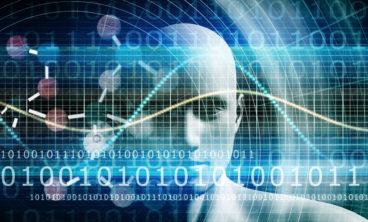 data management, data scientist