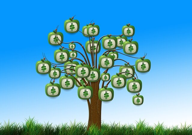 how to build a data strategy - money tree